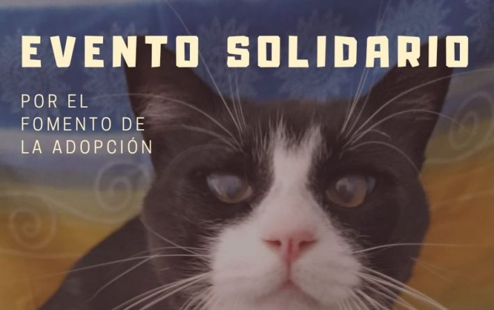 SPAB- Evento solidario 22-09-2019